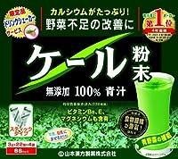 山本漢方 ケール粉末無添加100%青汁 ドリンクシェーカー付 3g×88包 × 5個セット