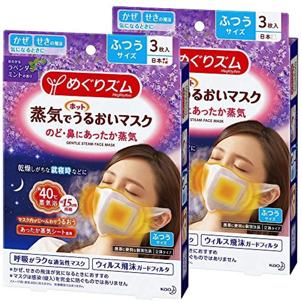 ゆるいスキャンダラス音【まとめ買い】めぐりズム 蒸気でホットうるおいマスク ラベンダーミントの香り ふつうサイズ 3枚入×2