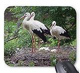 コウノトリのマウスパッド:フォトパッド*(世界の野鳥シリーズ) (B)