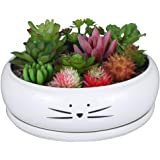 Koolkatkoo 8 Inch Large Cute Cat Ceramic Succulent Planter Pots with Removable Saucer Unique Porcelain Cactus Planters Decora