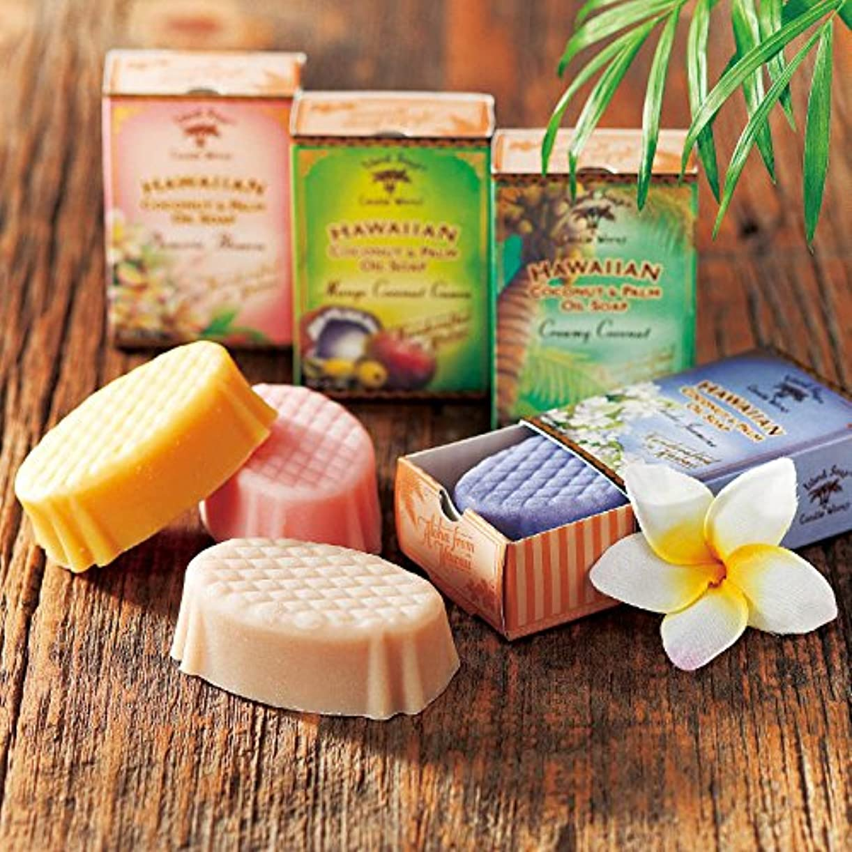 取り付け孤児彼ハワイ 土産 アイランドソープ ココナッツソープ 4種セット (海外旅行 ハワイ お土産)