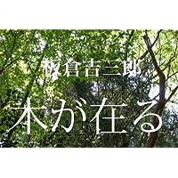 木が在る: ー写真集ー木の風景ー