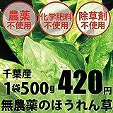 無農薬・無化学肥料 ほうれん草 500g