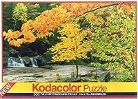 Kodacolor 500pc Bear川Maineジグソーパズル