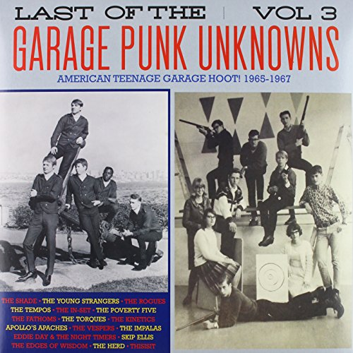 Last of the Garage Punk Unknow [12 inch Analog]