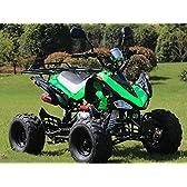 IceBear(アイスベアー) 最新型四輪バギー ATV 50cc 前進3速バック付 ミニカー登録 公道走行可 緑 HL50HG