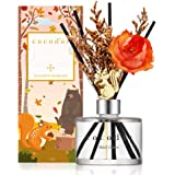 Cocod'or Chipmunk Diffuser (Seasonal Edition) / Black Cherry / 6.7oz / Reed Oil Diffuser, Room Fragrance, Home & Office Decor