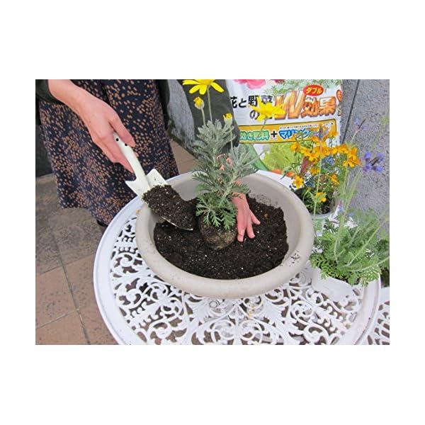 自然応用科学 花と野菜の土 W効果 25Lの紹介画像4