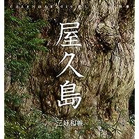 屋久島 三好和義 2019カレンダー