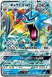 ポケモンカード サン&ムーン/ギャラドスGX(RR)/超次元の暴獣