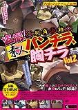 盗撮! 街角追跡 素人パンチラ、胸チラ Vol2 [DVD]