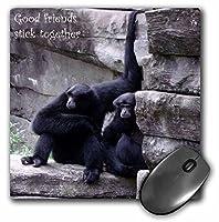 3drose LLC 8x 8x 0.25インチマウスパッド、2つMonkeys座っているTogether on A Ledge (MP 165618_ 1)
