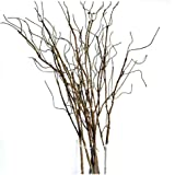 Pursuestar 6Pcs 75cm Lifelike Dry Willow Branches Bendable Iron Wires Artificial Floral Flower Stub Stem DIY Craft Wedding Ho