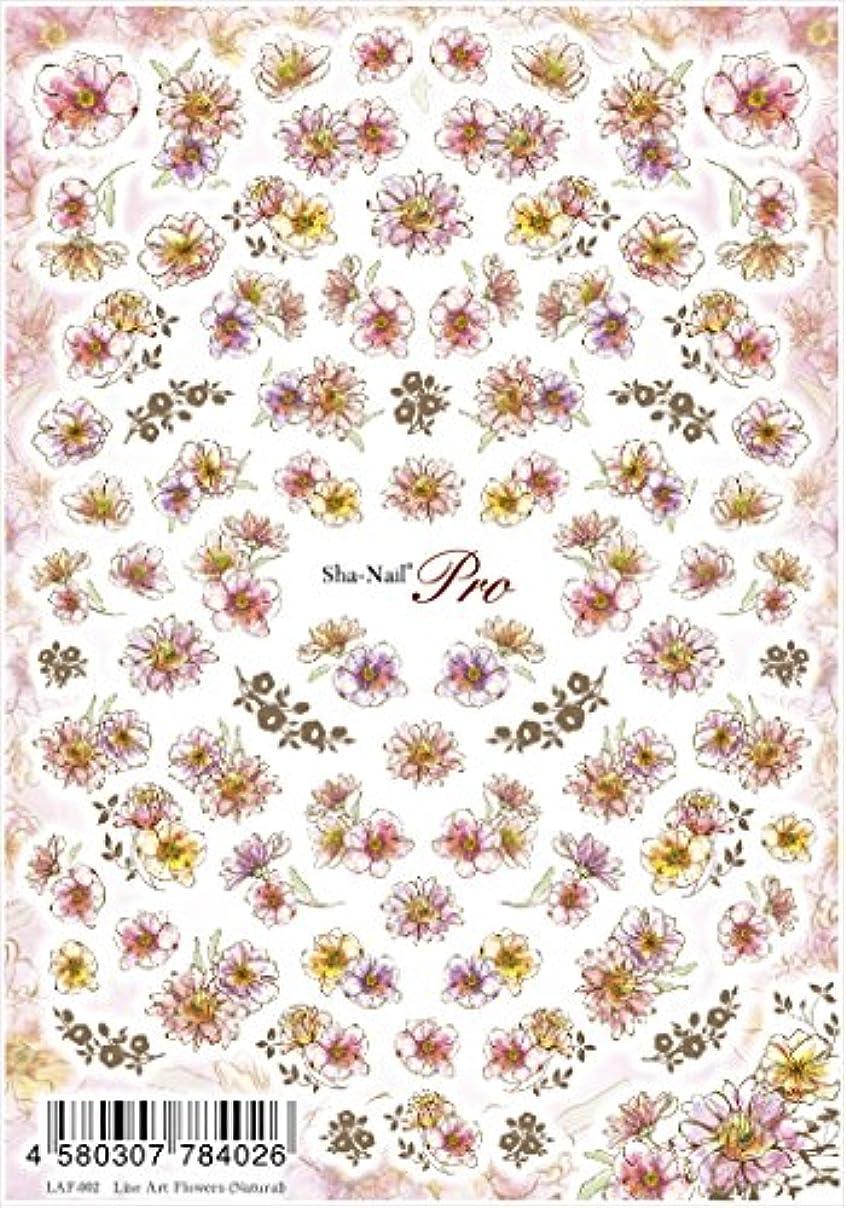 中世のアセンブリ完全に乾く写ネイルプロ ネイルシール ラインアートフラワーズ ナチュラル アート材