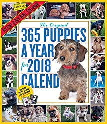 The Original 365 Puppies-A-Year Picture-A-Day 2018 Calendar
