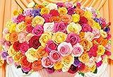 300ピース ジグソーパズル 100本のバラ~カラフル~(26x38cm)