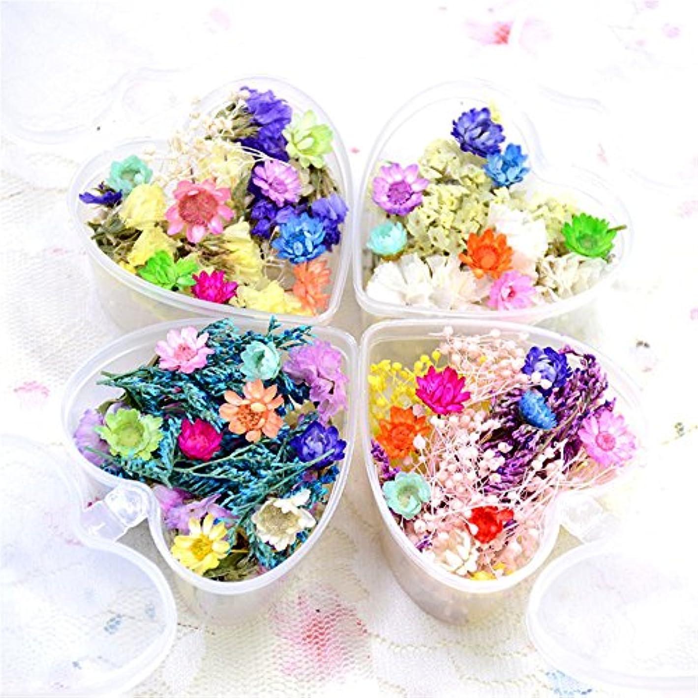 ウイルスでる代数的押し花 ドライフラワー 4ボックスセット 3Dネイル レジンデコレーション DIYデコレーション飾り用品 (セット4)