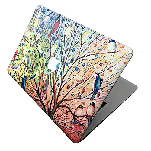 Macbook Air 13 Inch Case, [Color Painting Design] Soundmae Frosted Plastic Hard Shell Skin Smooth Touch Case for MacBook Air 13.3 Model A1369&A1466, Brids