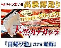 天然 ほうぼうの薄造り1~2人前90g×2皿 島根大田鮮魚市場 刺身よりも旨い高級薄造りだから味わえる旨味 日帰り漁のうまみをご堪能ください