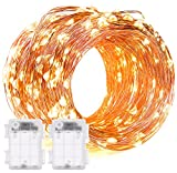 String Lights, DecorNova 2 Set of 19.7ft 60 LEDs IP44 Waterproof Super Bright Copper Wire Rope Lights with Timer for Christmas Home Bedroom Party Tree, 3AA Battery Case, Warm White [並行輸入品]