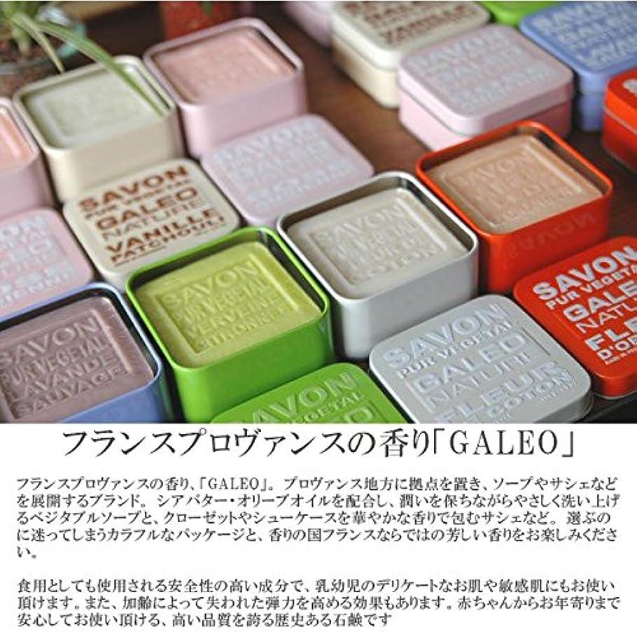 がっかりするシフト決めます(ガレオ)GALEO ga-002ベジタブルソープ GALEO BAR SOAP METAL/GA-002/ OldRose