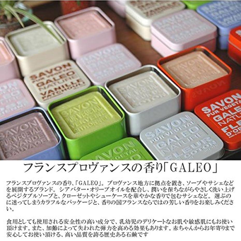 妊娠したカカドゥ鉛(ガレオ)GALEO ga-002ベジタブルソープ GALEO BAR SOAP METAL/GA-002/ OldRose