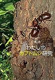 わたしのカブトムシ研究 画像