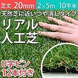 Liebe【リーベ】人工芝 芝丈20mm 2m×5m 10平米 + U字ピン12本 『パークシア・エコノミー ハイグレード』