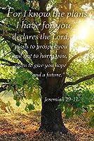 Jeremiah 29: 11–インスピレーション 12 x 18 Signed Art Print LANT-47111-708