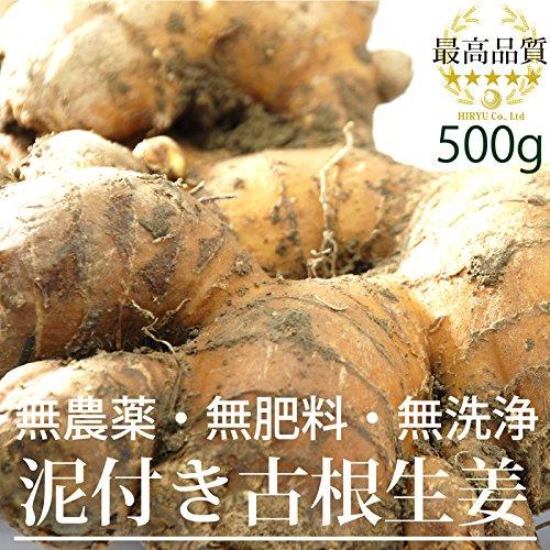 高知県産 泥付古根生姜500g (無農薬・無肥料・無洗浄)放射性物質検査済