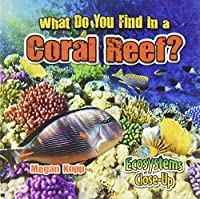 What Do You Find in a Coral Reef? (Ecosystems Close-Up)