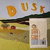 Dusk [12 inch Analog]