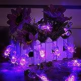 ハロウィン スパイダーライト ストリングライト LED ハロウィン スパイダー ハロウィン飾り ゴースト ライト 電飾 電球 クリスマス イベント パーティー バレンタインデー飾り 2.2M 20LED