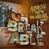 Unbreakable [12 inch Analog]