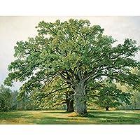 meisheアートポスター印刷キャンバス壁アート画像Landscape Treesオークで古いPeterhof by Ivan Shishkin油彩画Reproduction 15.75'' x 11.81'' AMA020A