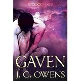 Gaven (The Gaven Series Book 1)
