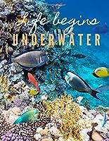 Life begins UNDERWATER: 14 WEEKS TO-DO LIST UNDATED PLANNER LIFE IN THE OCEAN COVER (Planners&Diaries)