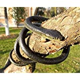 Rubber Snake Toy Northbear Realistic Rubber Snake Toy 52 Inch Long Party Prank [並行輸入品]