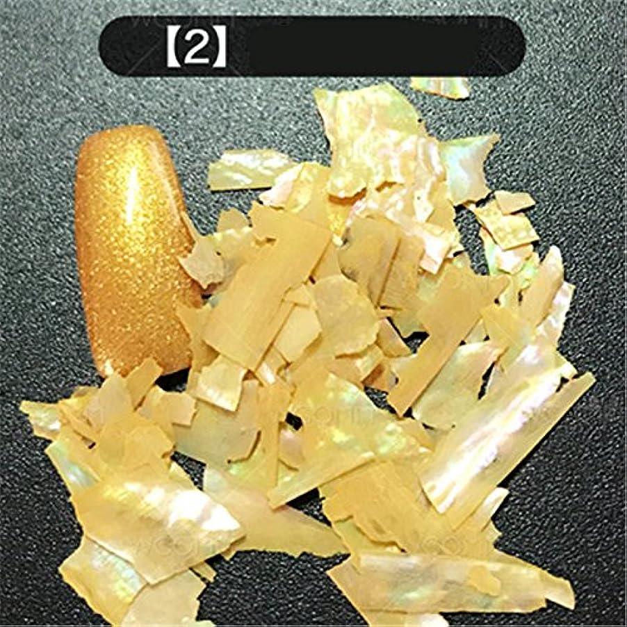 炎上故国礼儀12色選択可能 カラフル 人魚 天然 貝殻 クラッシュ シェル ネイルアート デコレーション UVジェル ネイルパーツ  ネイルサロン (02) [並行輸入品]
