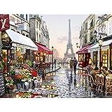 WONZOM 油絵 数字キットによる絵画 塗り絵 大人 手塗り DIY絵 デジタル油絵 40x50センチ パリ(フレームレス)