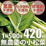 無農薬・無化学肥料の小松菜 1袋500g