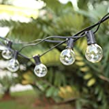G40 Outdoor String Bulb Lights with 25 Clear Globe Bulb(2 Replacement Bulbs)- UL Certified 25Ft Waterproof String Lights Outd