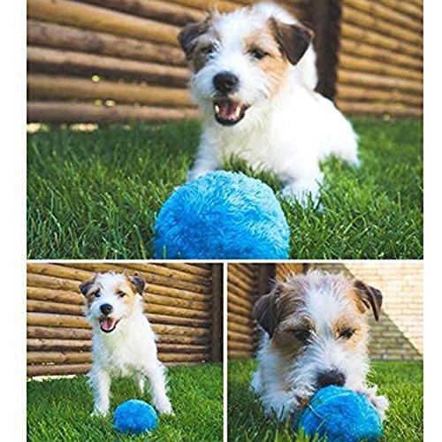ZooArts ペット 電動 ボール 犬 猫 おもちゃ 自動 動く ランダム フワフワ 運動不足 ストレス解消 トレーニング 猫 犬遊び用