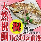 祝い鯛 お食い初め 300g 焼き鯛 天然 祝い飾りつき