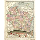 Apple Creek Wisconsin StateマップRainbow Trout無制限Fly Fishingアートプリント11 x 14 BrookブラウンCabin装飾画像