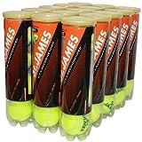 DUNLOP(ダンロップ)「St.JAMES(セントジェームス)(15缶/60球)」硬式テニスボール ¥ 7,720