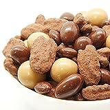 バレンタイン 4種のミックス チョコレート お試し 100g アーモンド マカダミアナッツ ピーカンナッツ レーズン チョコ