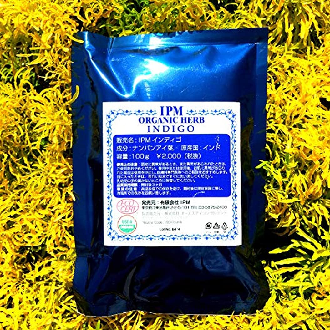 出口パブ推定IPM インディゴ 100g (リーフレットつき)