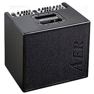 AER アコースティック ギター アンプ 100W X 2 ステレオ Domino 3