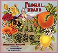 花柄ブランド–コルトン、カリフォルニア–Citrusクレートラベル 24 x 36 Giclee Print LANT-57403-24x36